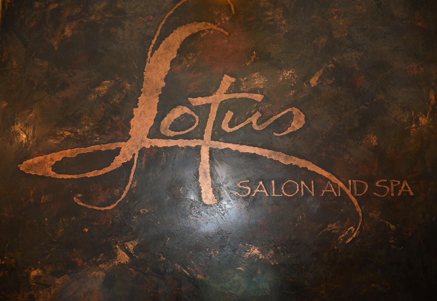 Lotus Salon & Spa is an Aveda salon that offers a variety of services to help you relieve stress and reveal your true beauty.